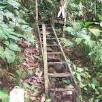 Tirimbina wet stairs - peldaños mojados en Tirimbina